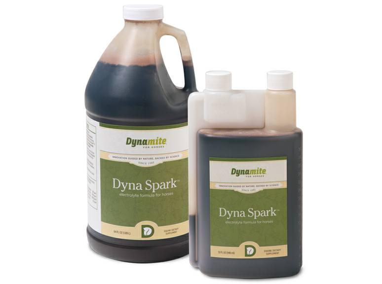 Dyna Spark Equine Electrolyte